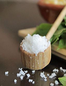 scoop-of-sea-salt-