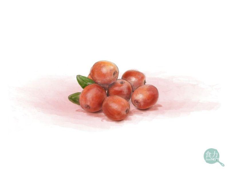 立秋食 紅棗