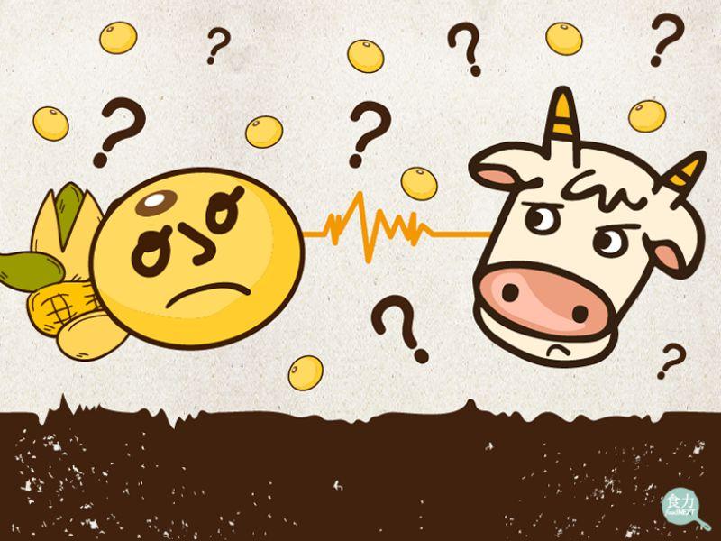 有「奶」字就代表很營養?植物奶真能取代動物奶?